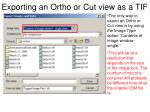 exporting an ortho or cut view as a tif