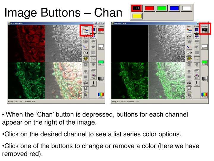 Image Buttons – Chan