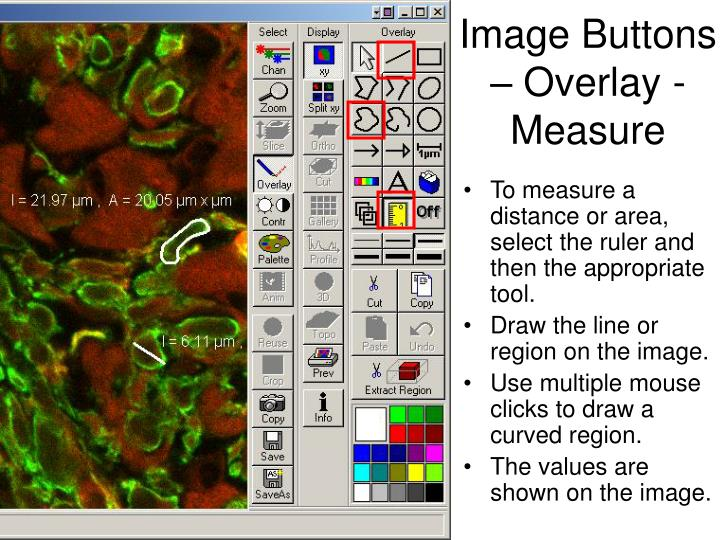 Image Buttons – Overlay - Measure