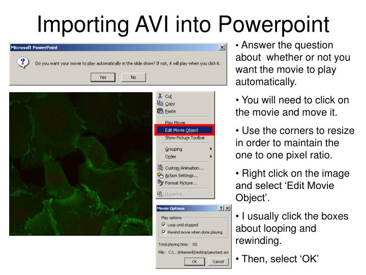 Importing AVI into Powerpoint