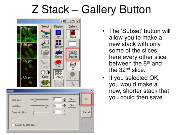 Z Stack – Gallery Button