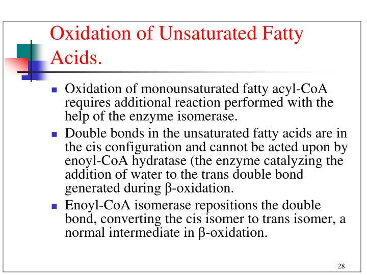 Oxidation of Unsaturated Fatty Acids.