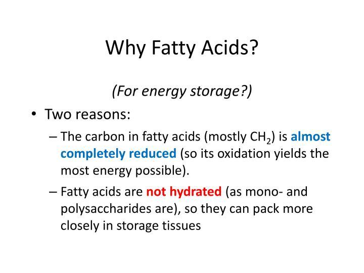 Why Fatty Acids?