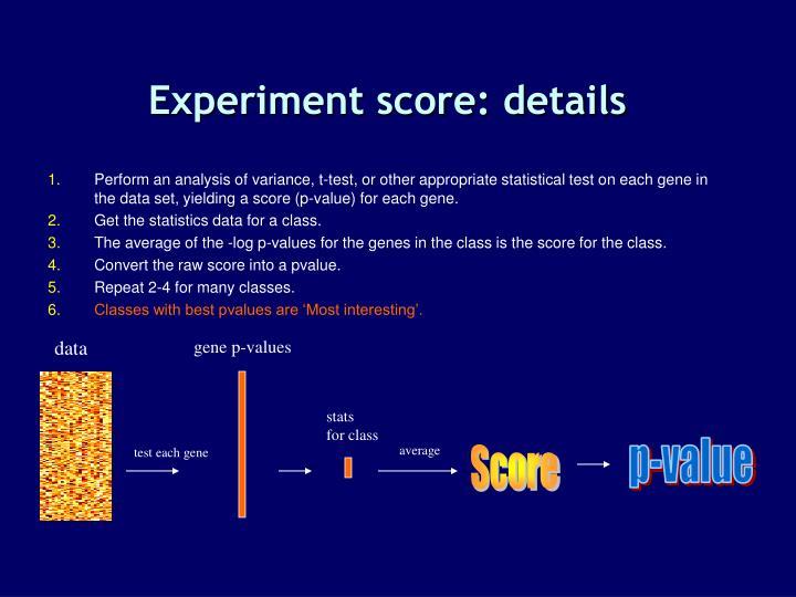 Experiment score: details