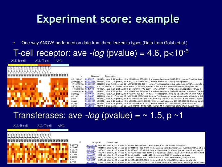 Experiment score: example