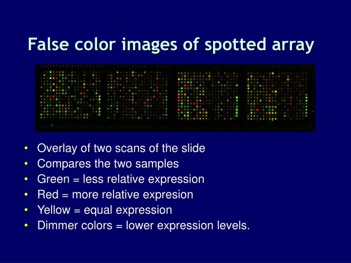 False color images of spotted array