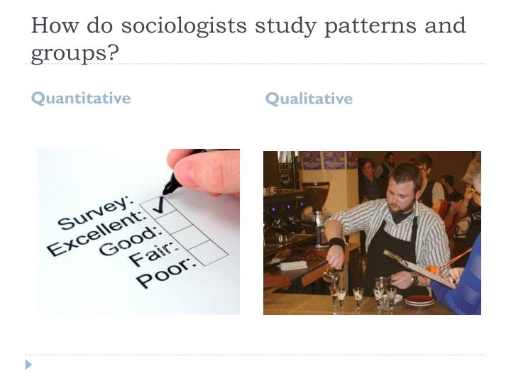How do sociologists study patterns and groups?