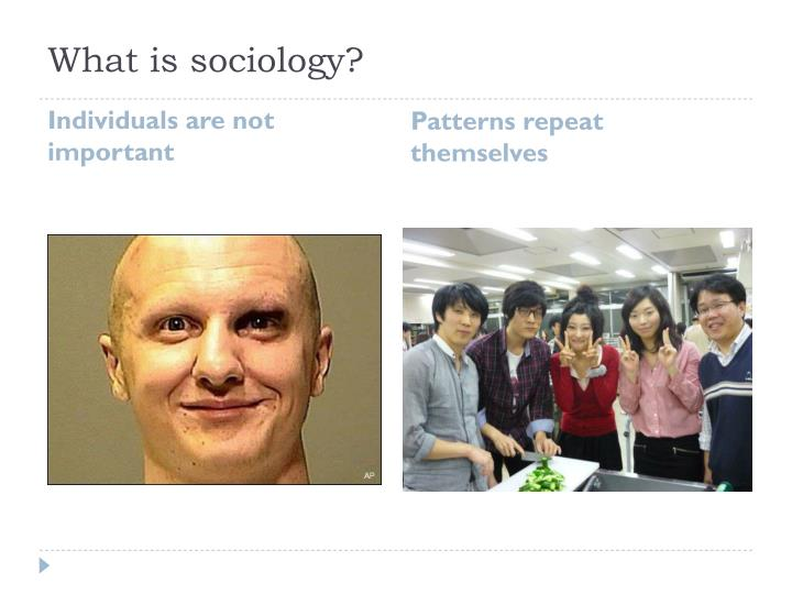 What is sociology1