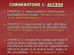 cornerstone 1 access