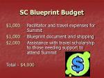 sc blueprint budget