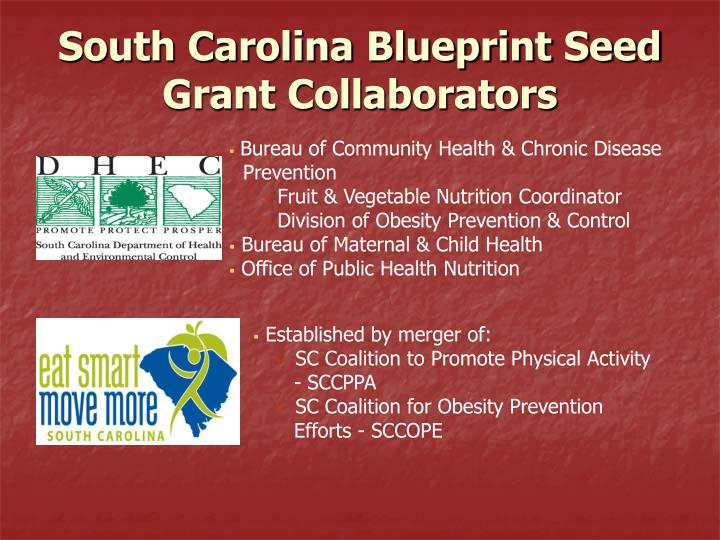 South Carolina Blueprint Seed Grant Collaborators