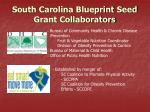 south carolina blueprint seed grant collaborators