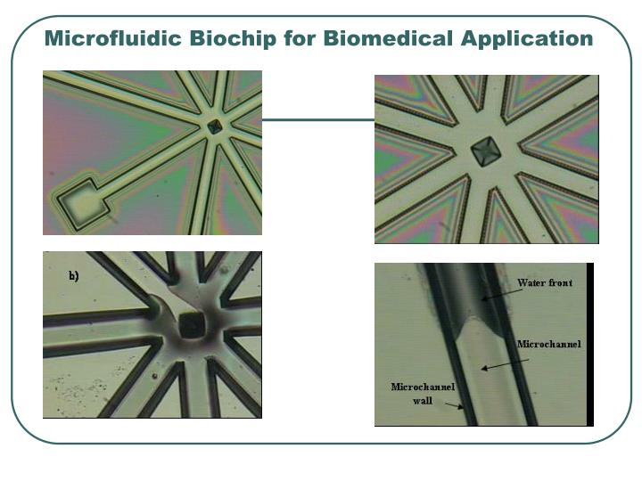 Microfluidic Biochip for Biomedical Application
