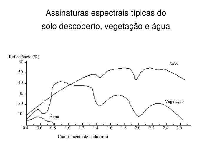 Assinaturas espectrais típicas do