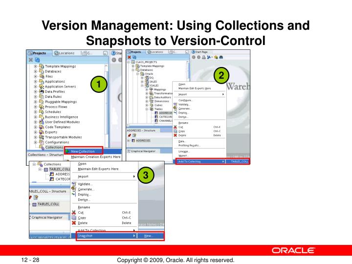 Version Management: Using Collections and Snapshots to Version-Control