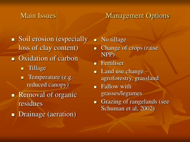 Main Issues                           Management Options