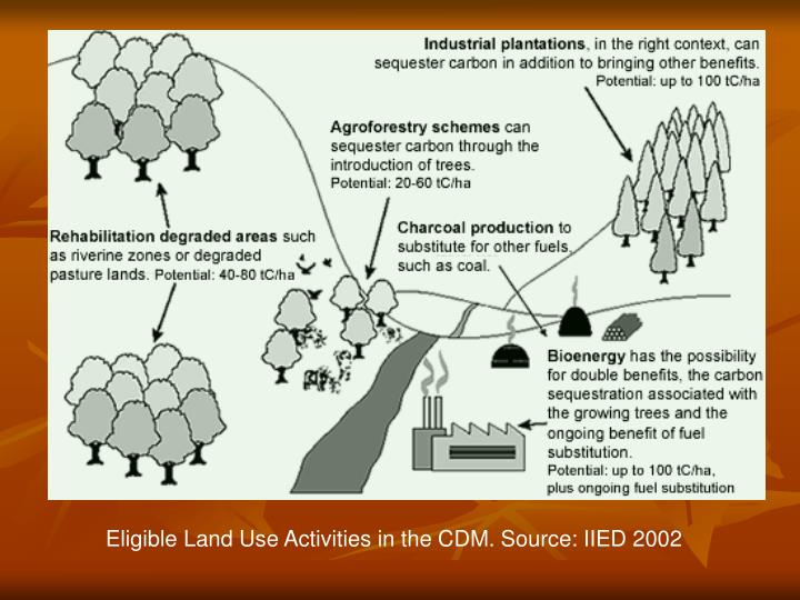Eligible Land Use Activities in the CDM. Source: IIED 2002