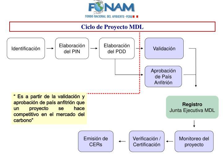 Ciclo de Proyecto MDL