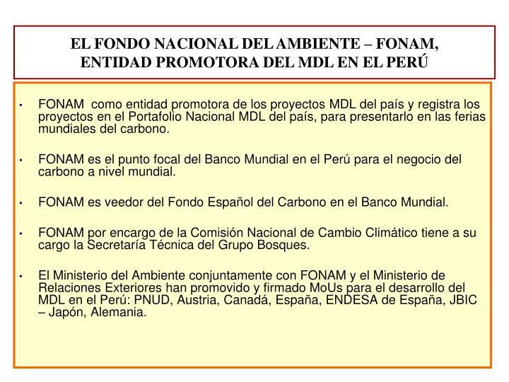 FONAM  como entidad promotora de los proyectos MDL del país y registra los proyectos en el Portafolio Nacional MDL del país, para presentarlo en las ferias mundiales del carbono.