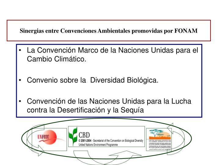 Sinergias entre Convenciones Ambientales promovidas por FONAM