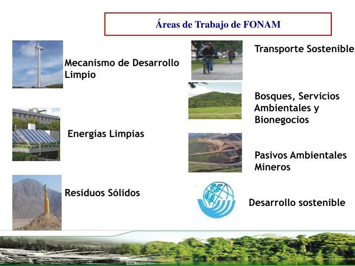 Áreas de Trabajo de FONAM