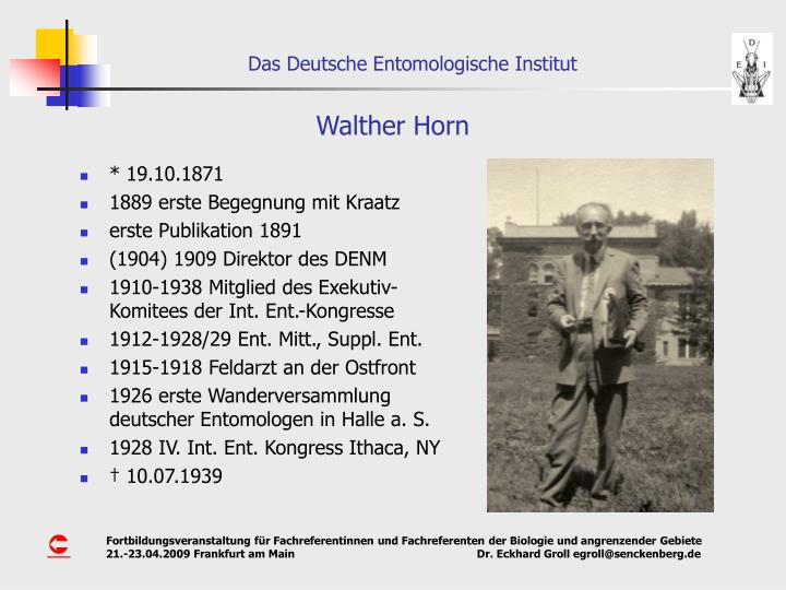 Walther Horn