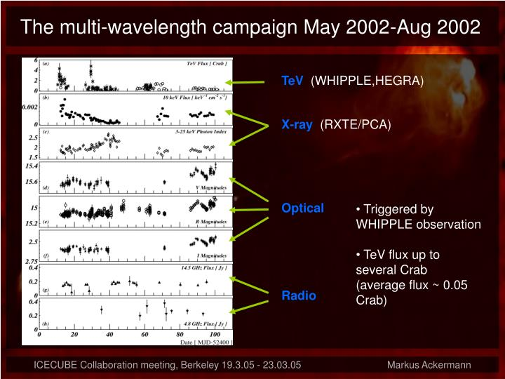 The multi-wavelength campaign May 2002-Aug 2002
