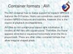 container formats avi1