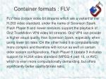 container formats flv