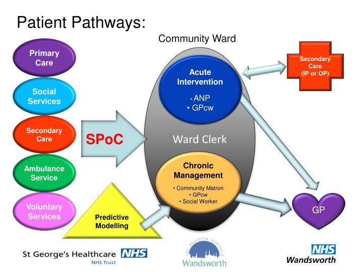 Patient Pathways: