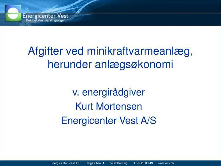 afgifter ved minikraftvarmeanl g herunder anl gs konomi