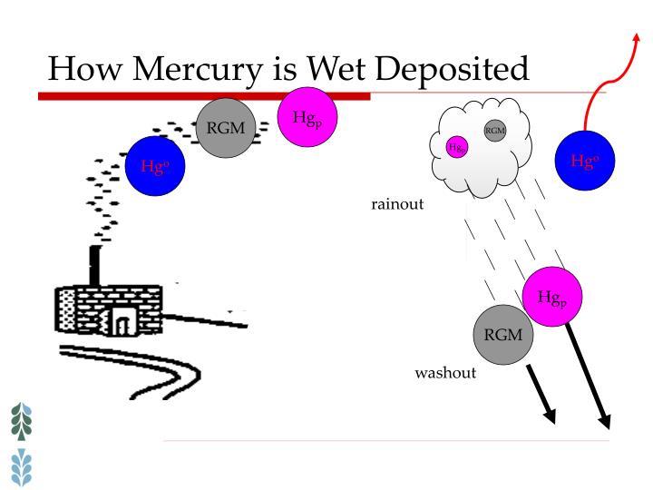 How Mercury is Wet Deposited