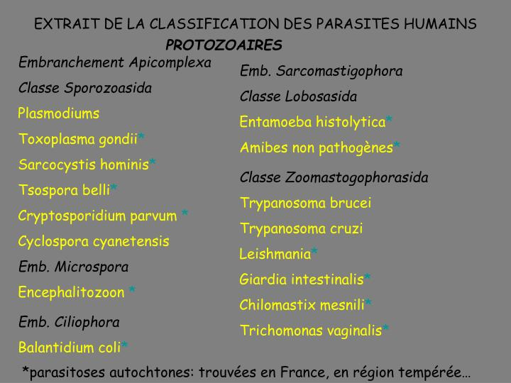 EXTRAIT DE LA CLASSIFICATION DES PARASITES HUMAINS
