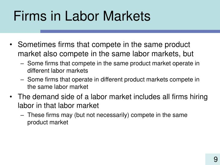 Firms in Labor Markets