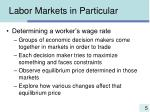 labor markets in particular