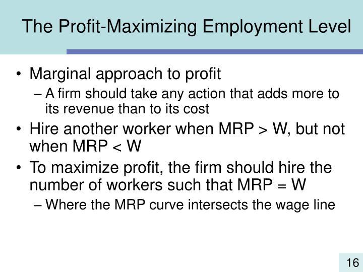 The Profit-Maximizing Employment Level