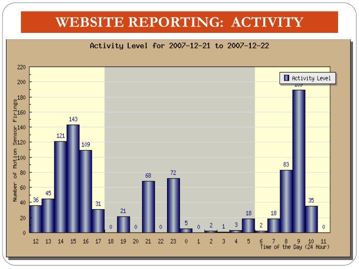 WEBSITE REPORTING:  ACTIVITY