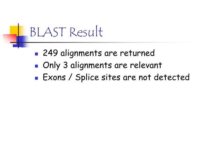 BLAST Result