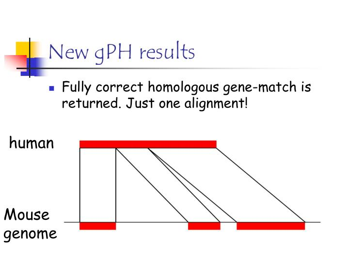 New gPH results