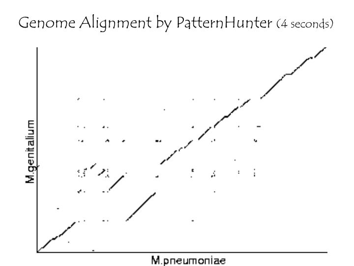 Genome Alignment by PatternHunter