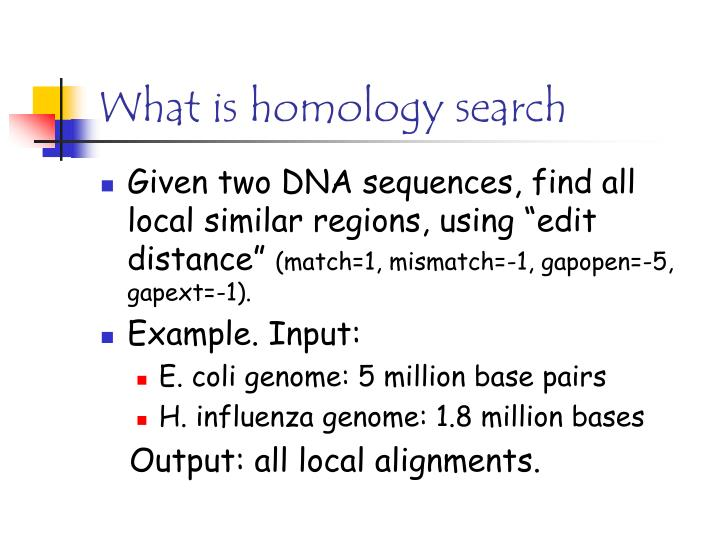 What is homology search