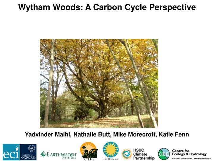Wytham Woods: A Carbon Cycle Perspective