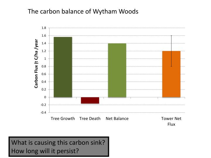 The carbon balance of Wytham Woods