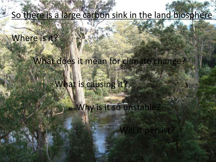 So there is a large carbon sink in the land biosphere