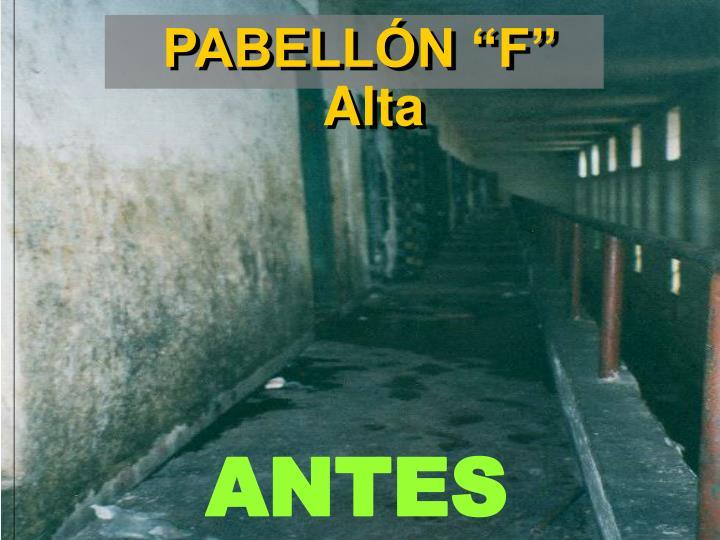 """PABELLÓN """"F"""" Alta"""