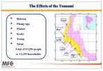 the effects of the tsunami