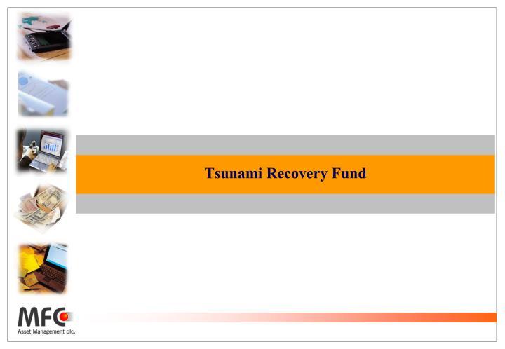 Tsunami Recovery Fund