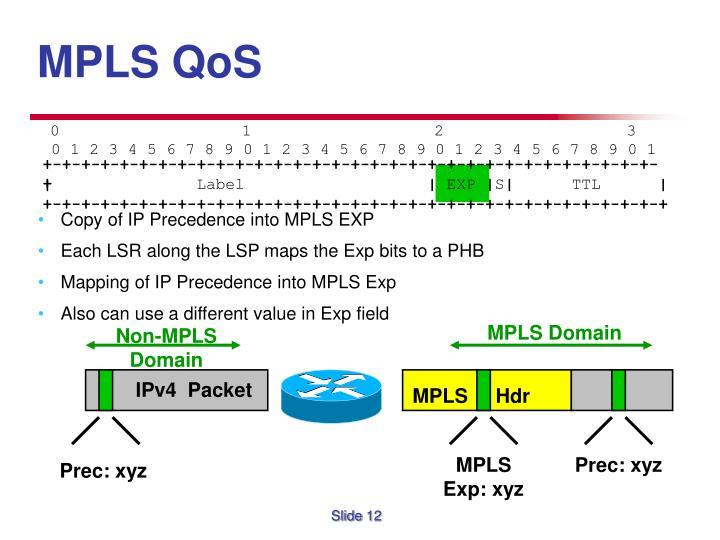 MPLS Domain