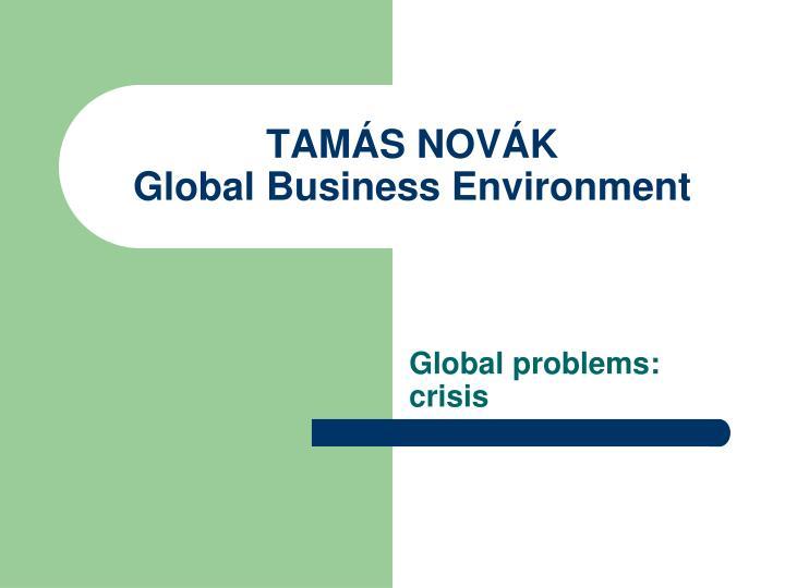 tam s nov k global business environment