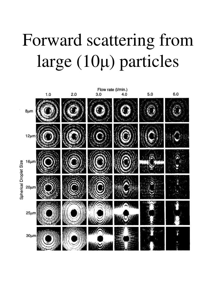 Forward scattering from large (10
